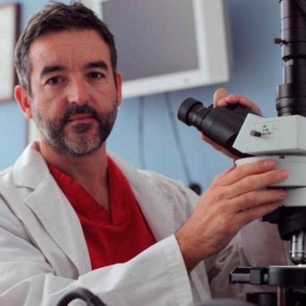Dr. Pedro Lapuente